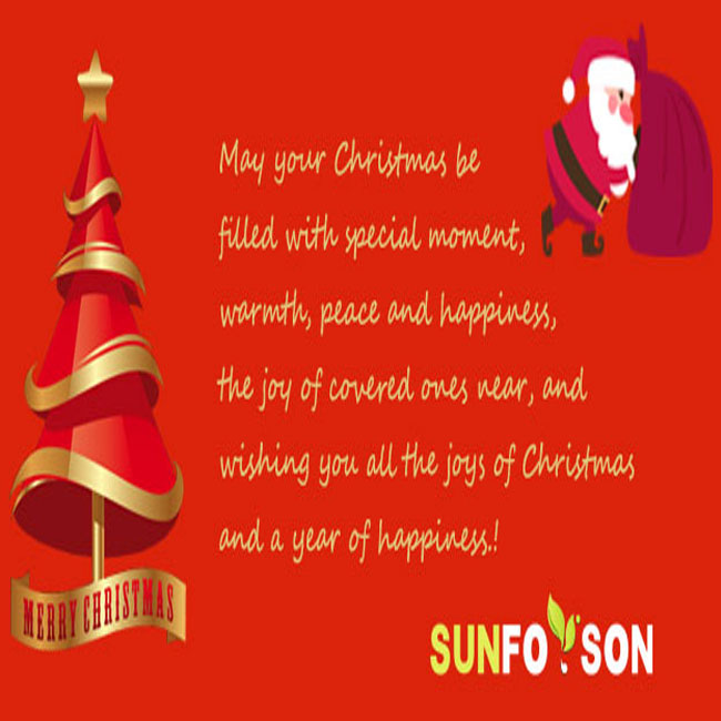 Merry Christmas from Sunforson